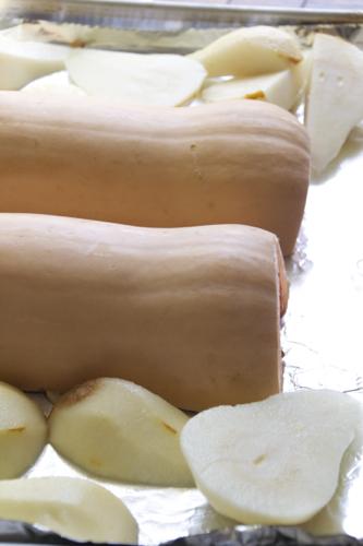 butternut squash 5